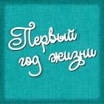 Картонный чипборд, надпись ПЕРВЫЙ ГОД ЖИЗНИ, 9.5х6.5 см. (Ч-380)