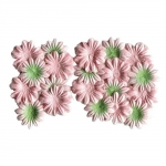 ScrapBerrys Набор цветков из шелковичной бумаги, Персиковый с зелёным (20 шт.)